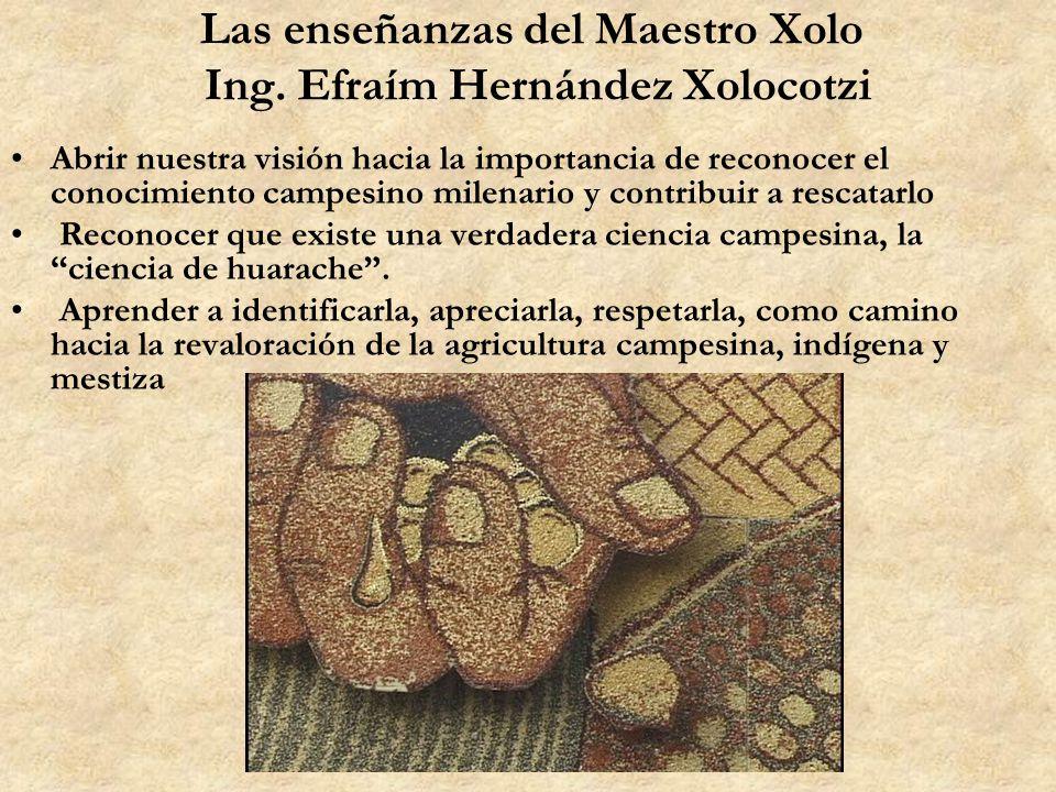 Las enseñanzas del Maestro Xolo Ing. Efraím Hernández Xolocotzi Abrir nuestra visión hacia la importancia de reconocer el conocimiento campesino milen