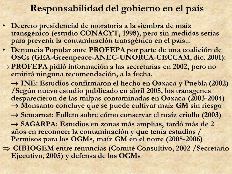Responsabilidad del gobierno en el país Decreto presidencial de moratoria a la siembra de maíz transgénico (estudio CONACYT, 1998), pero sin medidas s