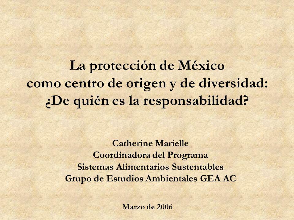 La protección de México como centro de origen y de diversidad: ¿De quién es la responsabilidad? Catherine Marielle Coordinadora del Programa Sistemas