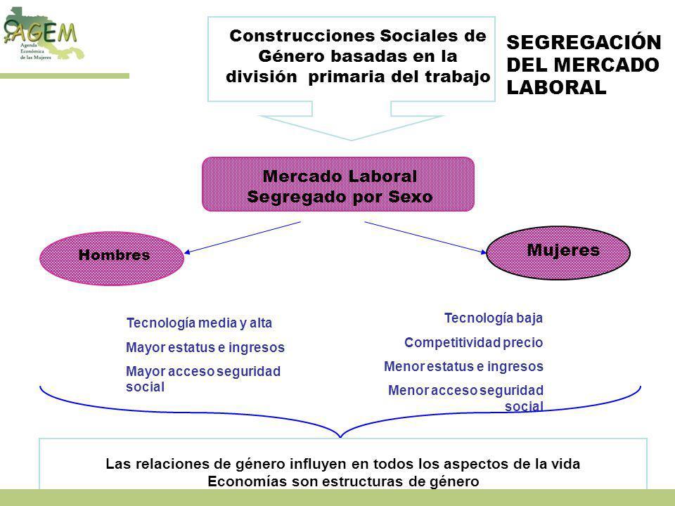 SEGREGACIÓN DEL MERCADO LABORAL Construcciones Sociales de Género basadas en la división primaria del trabajo Mercado Laboral Segregado por Sexo Hombr