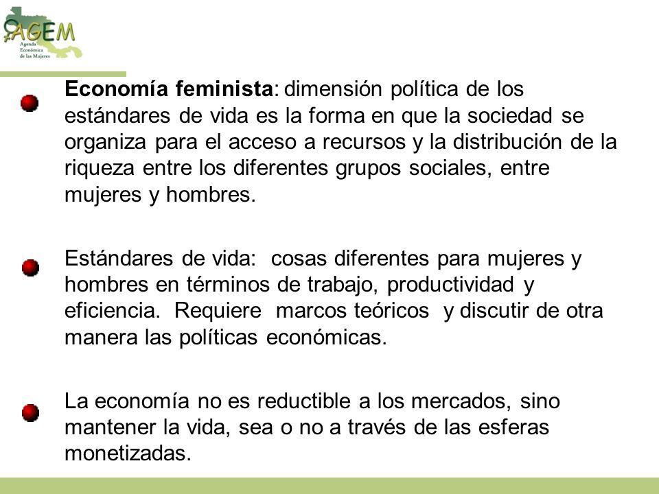 Economía feminista: dimensión política de los estándares de vida es la forma en que la sociedad se organiza para el acceso a recursos y la distribució