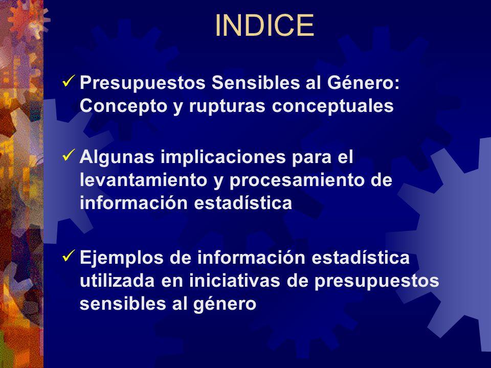 Ejemplos de Análisis (Ingresos) Análisis de impactos de la política impositiva: Objetivo: Analizar los sesgos de género en los efectos de la política tributaria Fuentes: Encuesta de Hogares, datos de recaudación tributaria EJEMPLOS: SRI Ecuador Investigaciones sobre el impacto del IVA en el consumo al interior de los hogares (Becas CONAMU-UNIFEM)