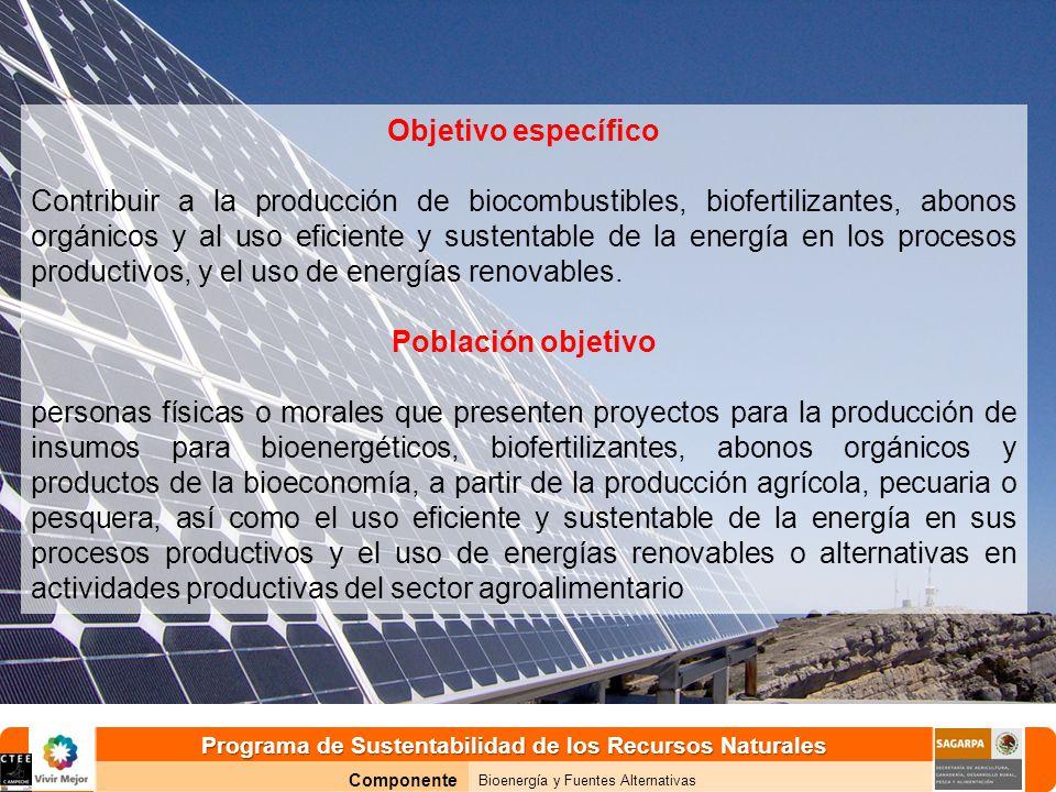Programa de Sustentabilidad de los Recursos Naturales Componente Bioenergía y Fuentes Alternativas Objetivo específico Contribuir a la producción de biocombustibles, biofertilizantes, abonos orgánicos y al uso eficiente y sustentable de la energía en los procesos productivos, y el uso de energías renovables.