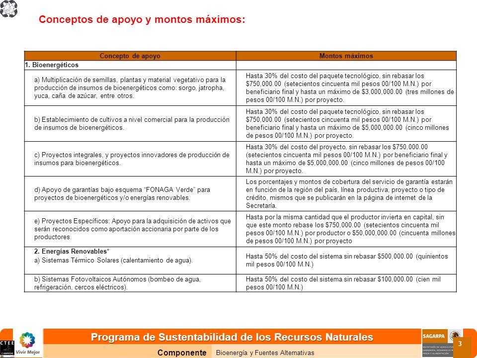 Programa de Sustentabilidad de los Recursos Naturales Componente Bioenergía y Fuentes Alternativas 3 Conceptos de apoyo y montos máximos: Concepto de apoyoMontos máximos 1.