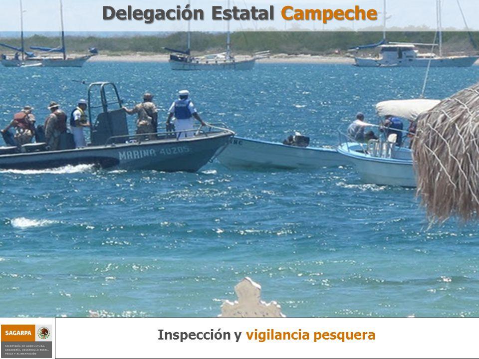 Programa de Sustentabilidad de los Recursos Naturales Componente Inspección y vigilancia pesquera Delegación Estatal Campeche