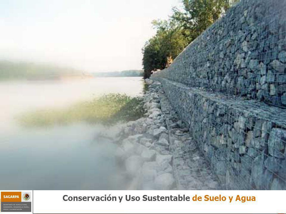 Programa de Sustentabilidad de los Recursos Naturales ComponenteConservación y Uso Sustentable de Suelo y Agua