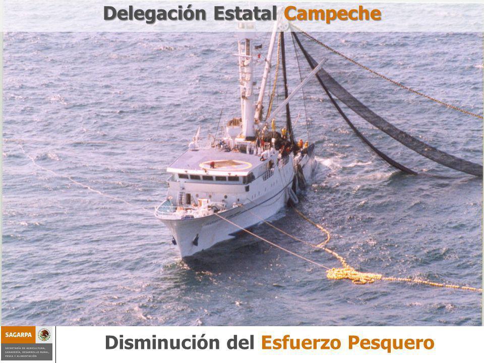 Programa de Sustentabilidad de los Recursos Naturales ComponenteDisminución del esfuerzo pesquero Disminución del Esfuerzo Pesquero Delegación Estatal Campeche
