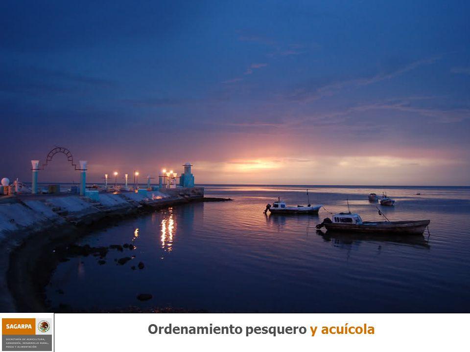 Programa de Sustentabilidad de los Recursos Naturales Componente Ordenamiento Pesquero y Acuícola Ordenamiento pesquero y acuícola