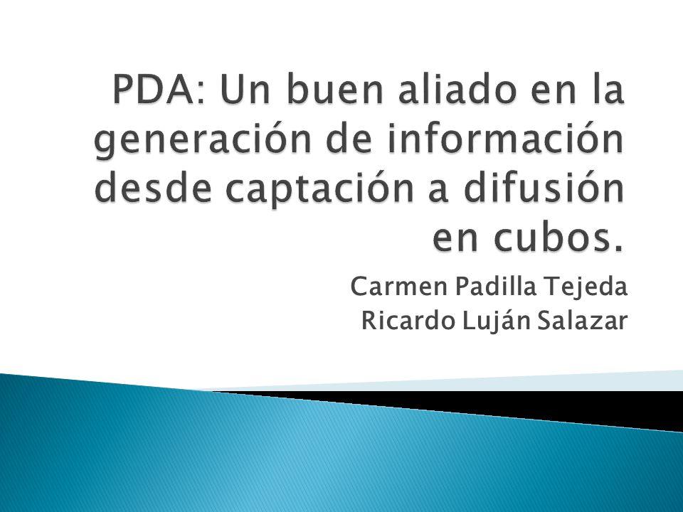 Carmen Padilla Tejeda Ricardo Luján Salazar