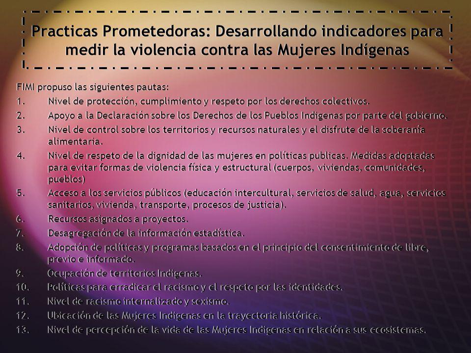 Practicas Prometedoras: Desarrollando indicadores para medir la violencia contra las Mujeres Indígenas FIMI propuso las siguientes pautas: 1.Nivel de protección, cumplimiento y respeto por los derechos colectivos.
