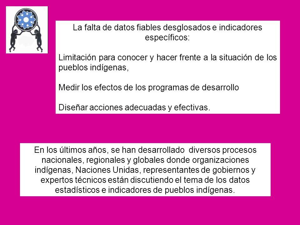 (Además de la desagregación de datos convencionales) Algunos otros indicadores que han sido definidos por otros países para monitorear la implementación del UNDAF son: Número de títulos emitidos a comunidades indígenas (Honduras) Número de centros educativos con educación bilingüe e intercultural en áreas rurales /urbanas (Perú) Número de idiomas nativos que cuentan con texto bilingüe elaborado y en uso para la Educación Básica (Perú) Número de mujeres participantes en organizaciones indígenas o en grupos étnicos (Perú) Sistema de Naciones Unidas en Bolivia: Pueblos Indígenas Originarios y Objetivos de Desarrollo del Milenio Brechas según la condición etnolingüística de la población con relación a los compromisos universales del desarrollo humano establecidos en los ODM.