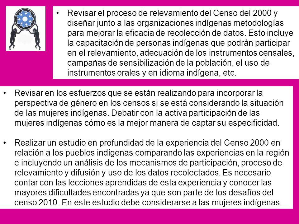 Revisar el proceso de relevamiento del Censo del 2000 y diseñar junto a las organizaciones indígenas metodologías para mejorar la eficacia de recolecc