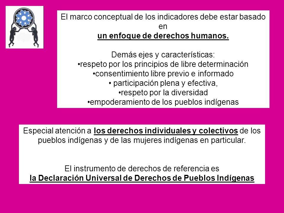 El marco conceptual de los indicadores debe estar basado en un enfoque de derechos humanos. Demás ejes y características: respeto por los principios d