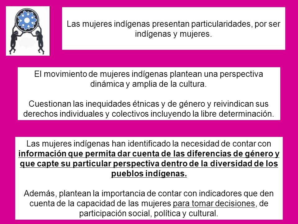 Las mujeres indígenas presentan particularidades, por ser indígenas y mujeres. El movimiento de mujeres indígenas plantean una perspectiva dinámica y