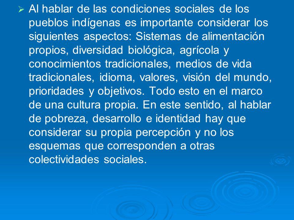 Al hablar de las condiciones sociales de los pueblos indígenas es importante considerar los siguientes aspectos: Sistemas de alimentación propios, div