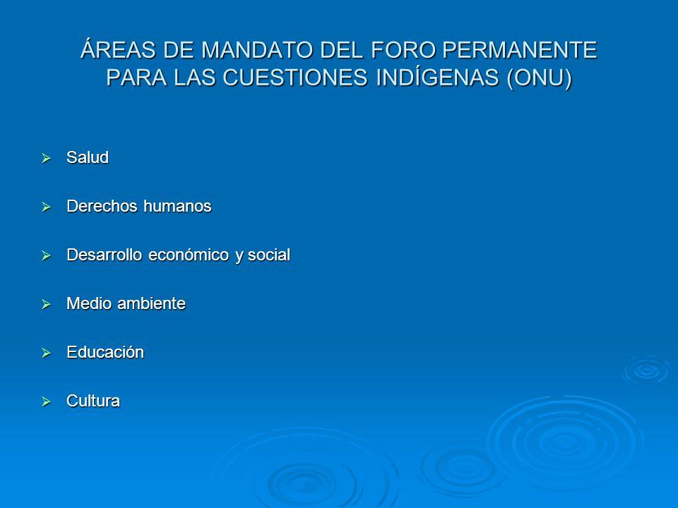 ÁREAS DE MANDATO DEL FORO PERMANENTE PARA LAS CUESTIONES INDÍGENAS (ONU) Salud Salud Derechos humanos Derechos humanos Desarrollo económico y social D