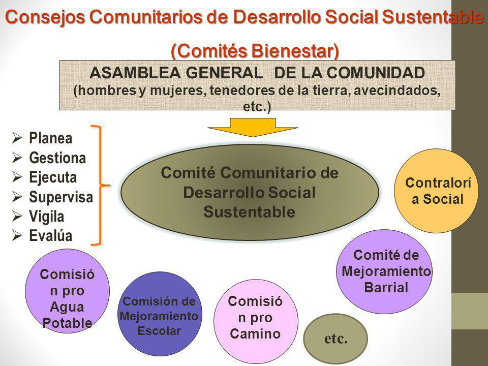 Estrategia General MD S OS C PLANEACIÓN PARTICIPATIVA Py 2 PLAN DE DESARROLLO COMUNITARIO Py 1 Py 3 Py n Py x DEMANDA SOCIAL ORDENADA Y PRIORIZADA A ESCALA COMUNITARIA Programa Acción Comunitaria (PAC) Programas normales de gobierno