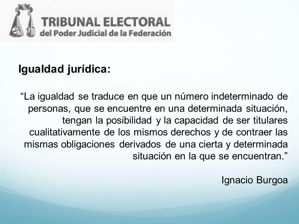 Igualdad jurídica: La igualdad se traduce en que un número indeterminado de personas, que se encuentre en una determinada situación, tengan la posibil