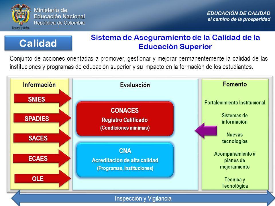 Calidad Fomento Fortalecimiento Institucional Sistemas de información Nuevas tecnologías Acompañamiento a planes de mejoramiento Técnica y Tecnológica