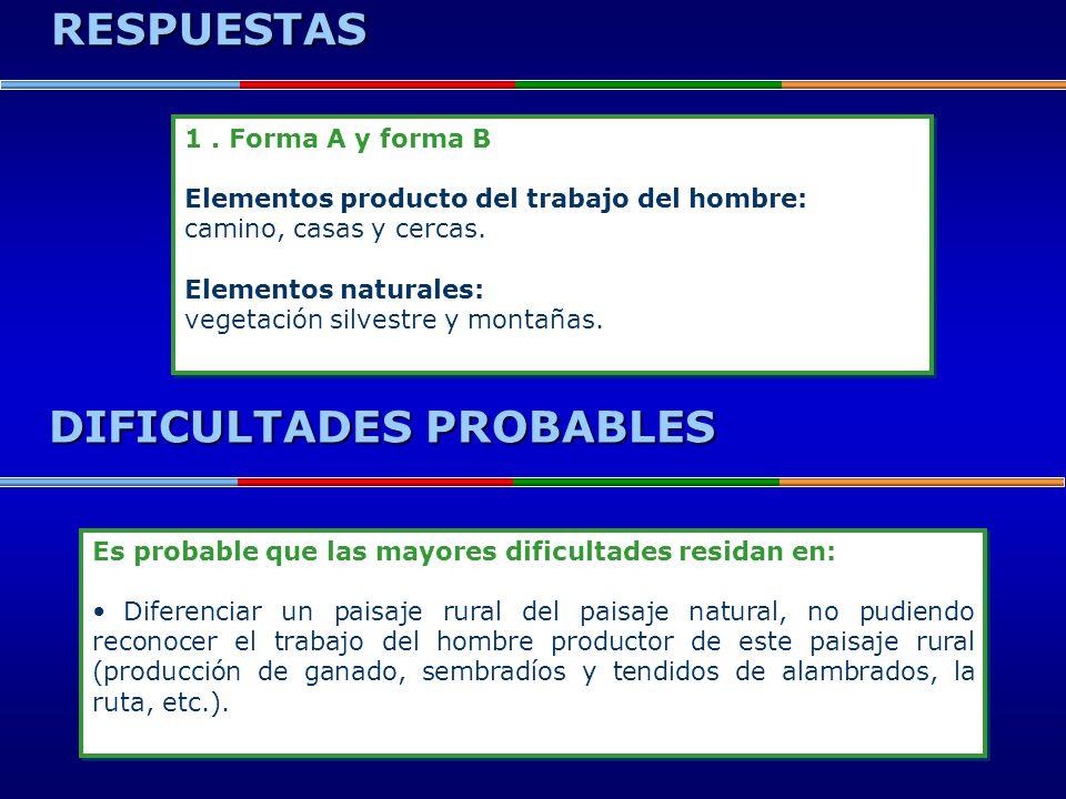 RESPUESTAS DIFICULTADES PROBABLES 1. Forma A y forma B Elementos producto del trabajo del hombre: camino, casas y cercas. Elementos naturales: vegetac