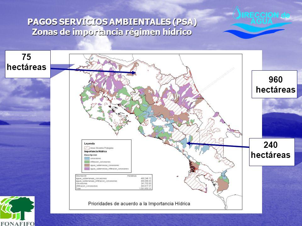 PAGOS SERVICIOS AMBIENTALES (PSA) Zonas de importancia régimen hídrico 960 hectáreas 240 hectáreas 75 hectáreas