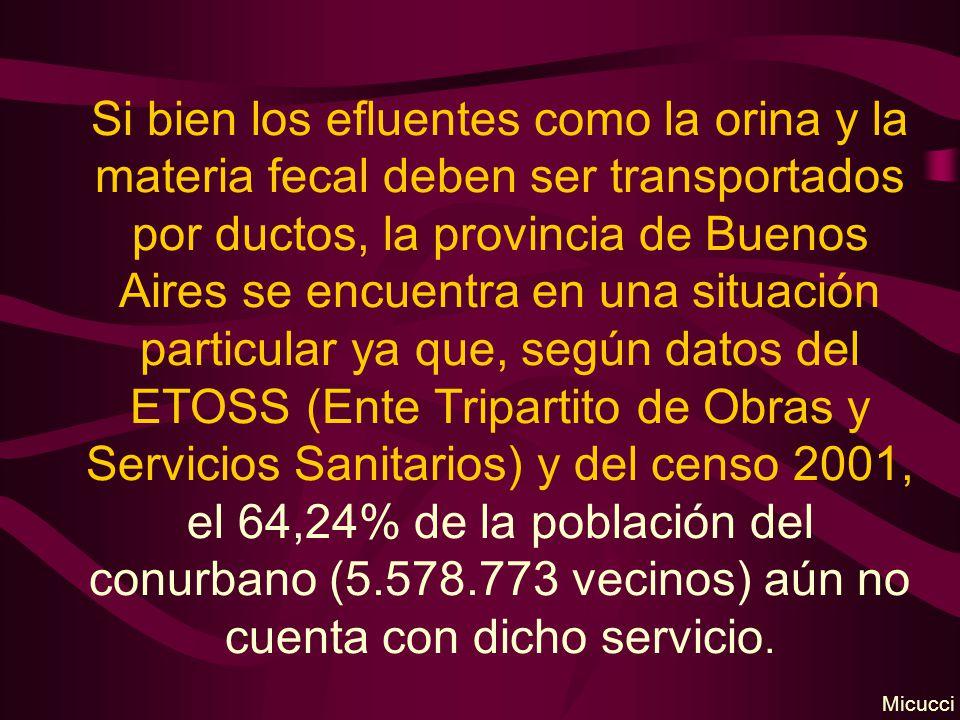 Si bien los efluentes como la orina y la materia fecal deben ser transportados por ductos, la provincia de Buenos Aires se encuentra en una situación