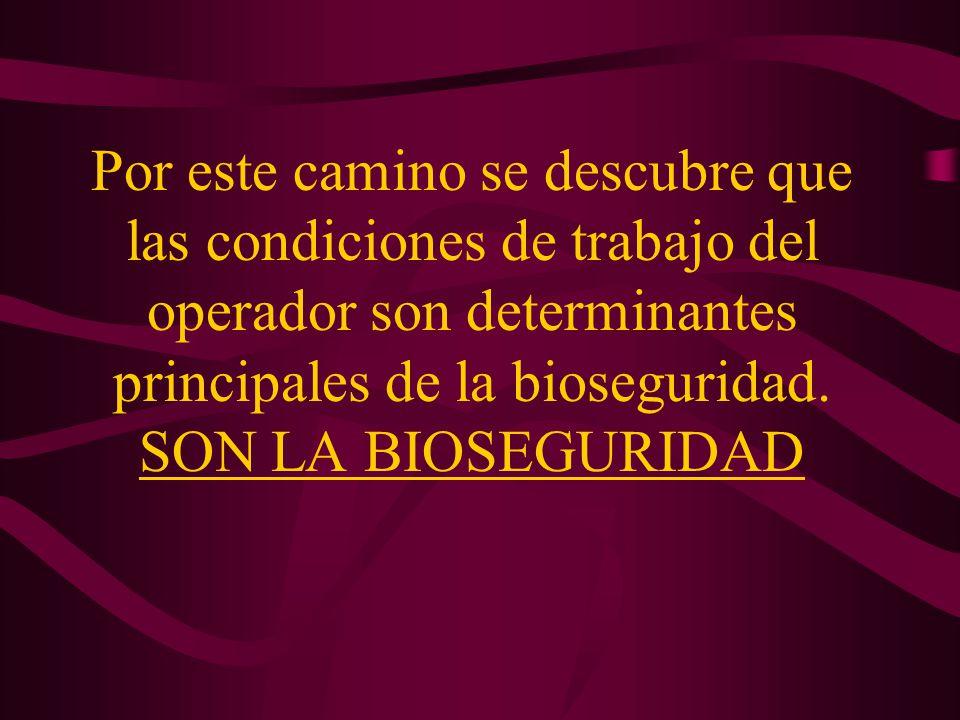 Por este camino se descubre que las condiciones de trabajo del operador son determinantes principales de la bioseguridad. SON LA BIOSEGURIDAD