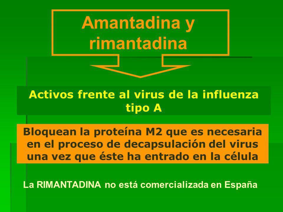 Amantadina y rimantadina Bloquean la proteína M2 que es necesaria en el proceso de decapsulación del virus una vez que éste ha entrado en la célula Activos frente al virus de la influenza tipo A La RIMANTADINA no está comercializada en España