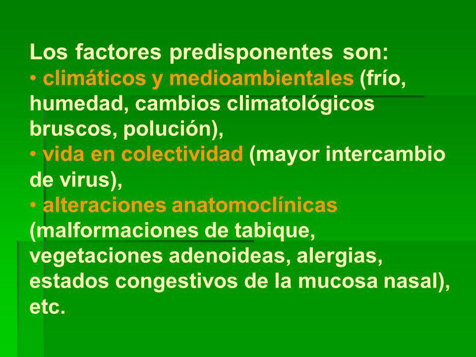 Los factores predisponentes son: climáticos y medioambientales (frío, humedad, cambios climatológicos bruscos, polución), vida en colectividad (mayor intercambio de virus), alteraciones anatomoclínicas (malformaciones de tabique, vegetaciones adenoideas, alergias, estados congestivos de la mucosa nasal), etc.