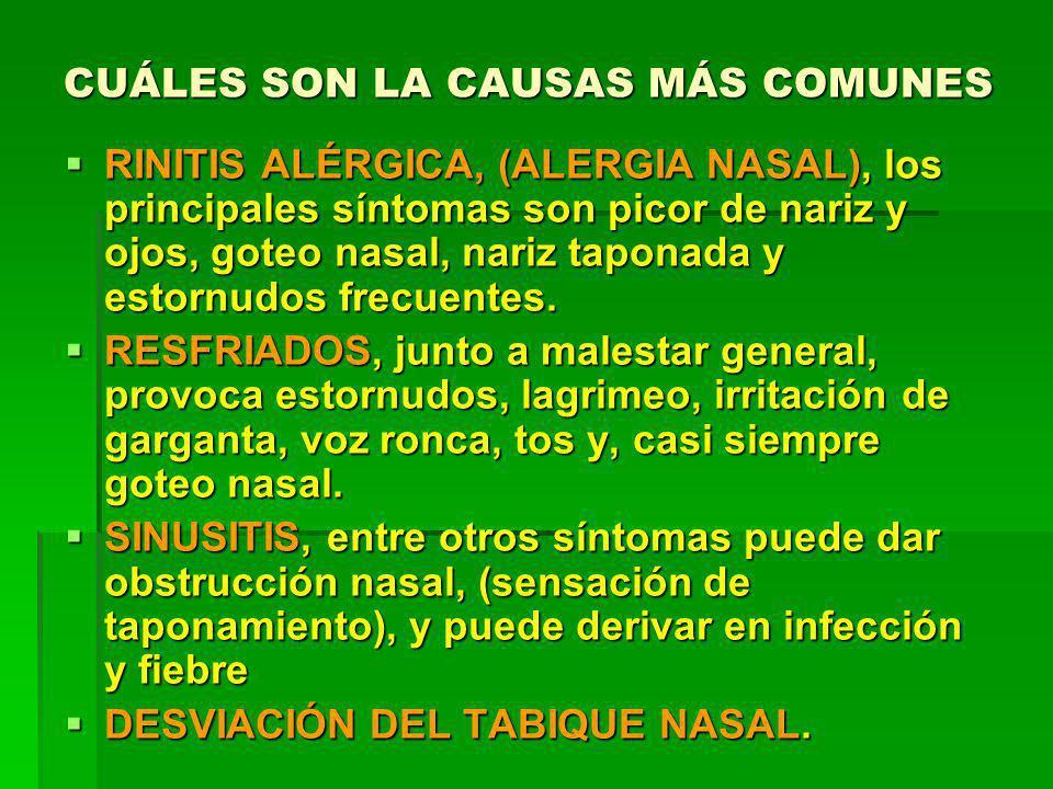 CUÁLES SON LA CAUSAS MÁS COMUNES RINITIS ALÉRGICA, (ALERGIA NASAL), los principales síntomas son picor de nariz y ojos, goteo nasal, nariz taponada y estornudos frecuentes.