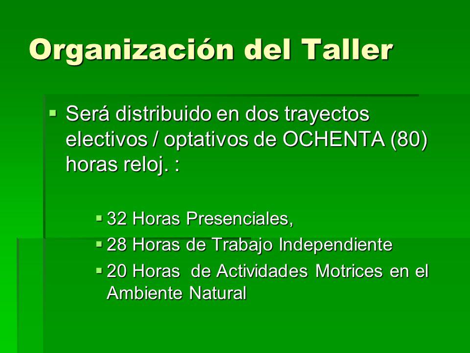 Organización del Taller Será distribuido en dos trayectos electivos / optativos de OCHENTA (80) horas reloj. : Será distribuido en dos trayectos elect