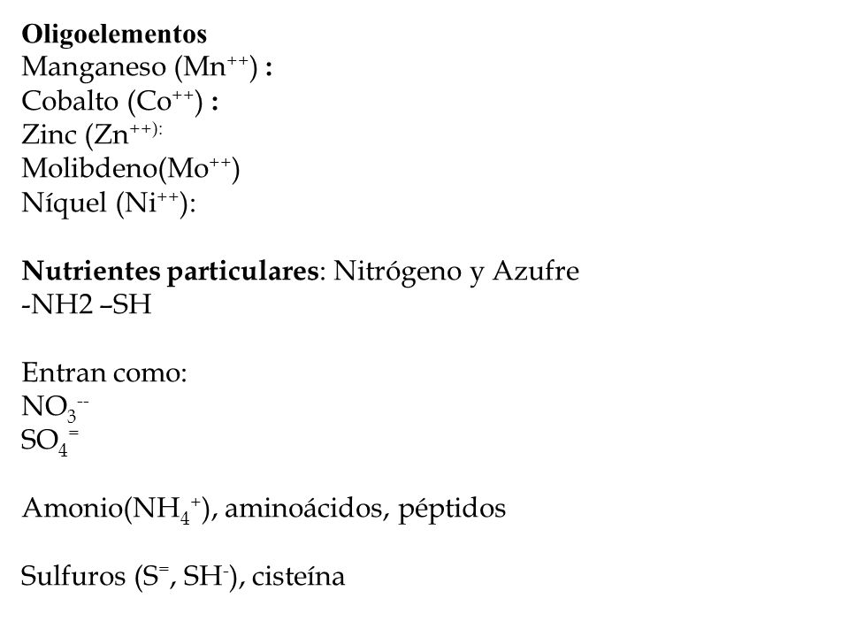 Oligoelementos Manganeso (Mn ++ ) : Cobalto (Co ++ ) : Zinc (Zn ++): Molibdeno(Mo ++ ) Níquel (Ni ++ ): Nutrientes particulares : Nitrógeno y Azufre -NH2 –SH Entran como: NO 3 -- SO 4 = Amonio(NH 4 + ), aminoácidos, péptidos Sulfuros (S =, SH - ), cisteína