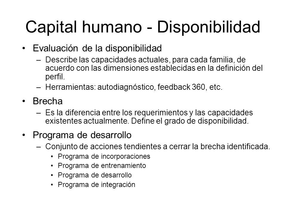 Capital humano - Disponibilidad Evaluación de la disponibilidad –Describe las capacidades actuales, para cada familia, de acuerdo con las dimensiones establecidas en la definición del perfil.
