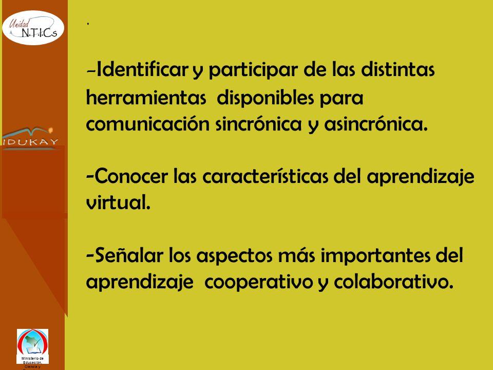 Ministerio de Educación, Ciencia y Tecnología. - Identificar y participar de las distintas herramientas disponibles para comunicación sincrónica y asi