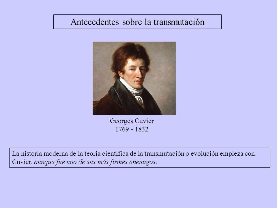 Georges Cuvier 1769 - 1832 La historia moderna de la teoría científica de la transmutación o evolución empieza con Cuvier, aunque fue uno de sus más firmes enemigos.