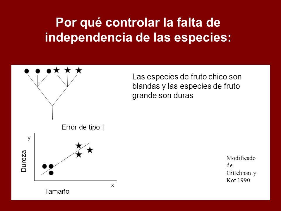 Por qué controlar la falta de independencia de las especies: Modificado de Gittelman y Kot 1990 x y Las especies de fruto chico son blandas y las espe