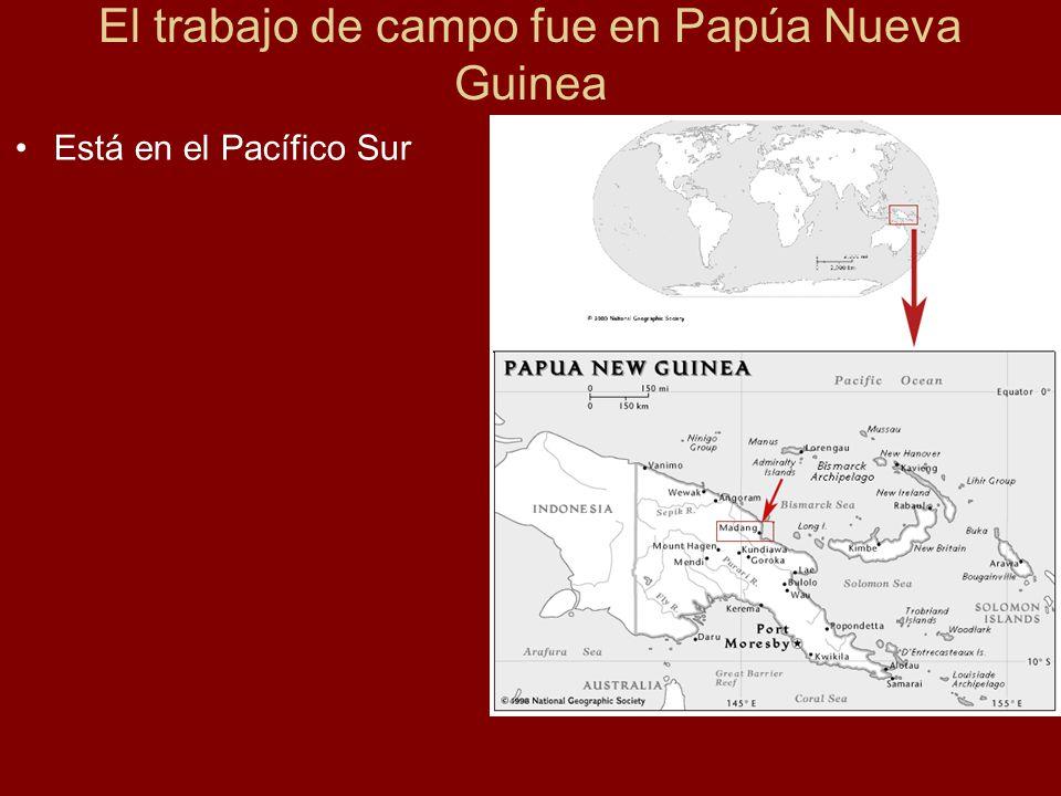 El trabajo de campo fue en Papúa Nueva Guinea Está en el Pacífico Sur