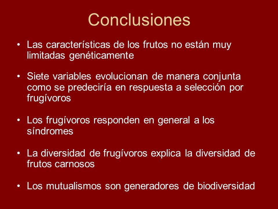 Conclusiones Las características de los frutos no están muy limitadas genéticamente Siete variables evolucionan de manera conjunta como se predeciría