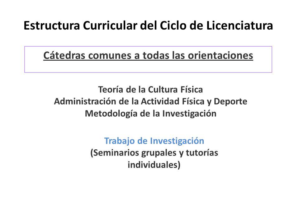 Estructura Curricular del Ciclo de Licenciatura Cátedras comunes a todas las orientaciones Teoría de la Cultura Física Administración de la Actividad