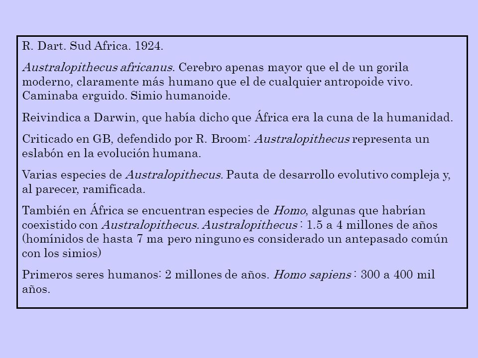 R. Dart. Sud Africa. 1924. Australopithecus africanus. Cerebro apenas mayor que el de un gorila moderno, claramente más humano que el de cualquier ant