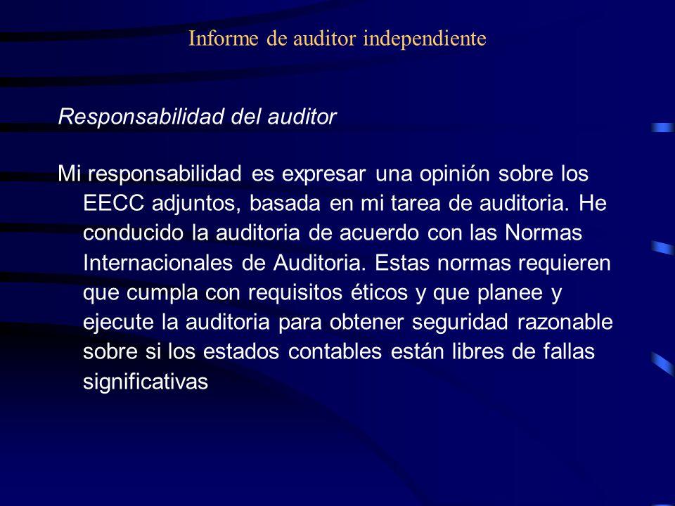 Informe de auditor independiente Responsabilidad del auditor Mi responsabilidad es expresar una opinión sobre los EECC adjuntos, basada en mi tarea de auditoria.