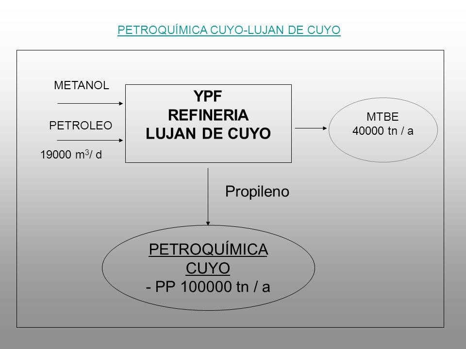 YPF REFINERIA LUJAN DE CUYO METANOL PETROLEO 19000 m 3 / d MTBE 40000 tn / a PETROQUÍMICA CUYO - PP 100000 tn / a Propileno PETROQUÍMICA CUYO-LUJAN DE