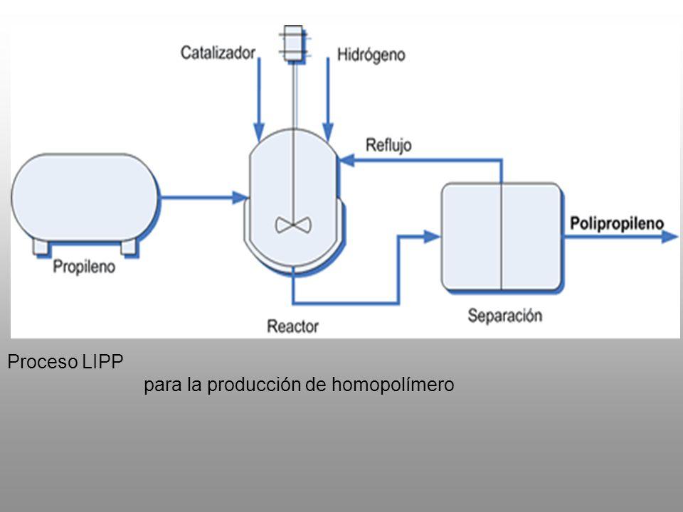 Proceso LIPP para la producción de homopolímero