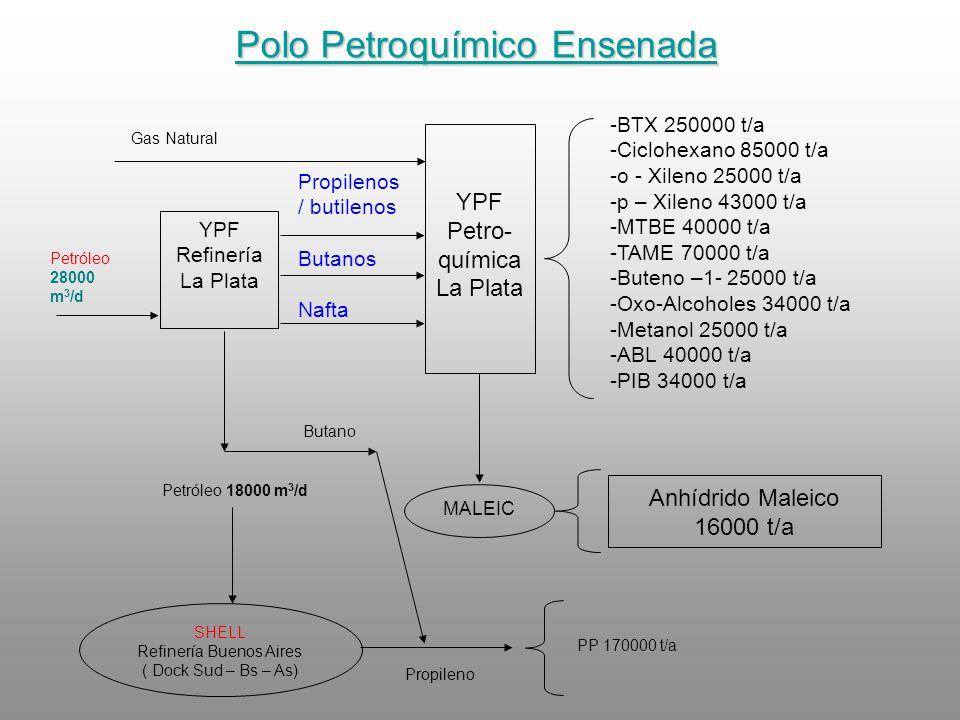 YPF Petro- química La Plata YPF Refinería La Plata -BTX 250000 t/a -Ciclohexano 85000 t/a -o - Xileno 25000 t/a -p – Xileno 43000 t/a -MTBE 40000 t/a