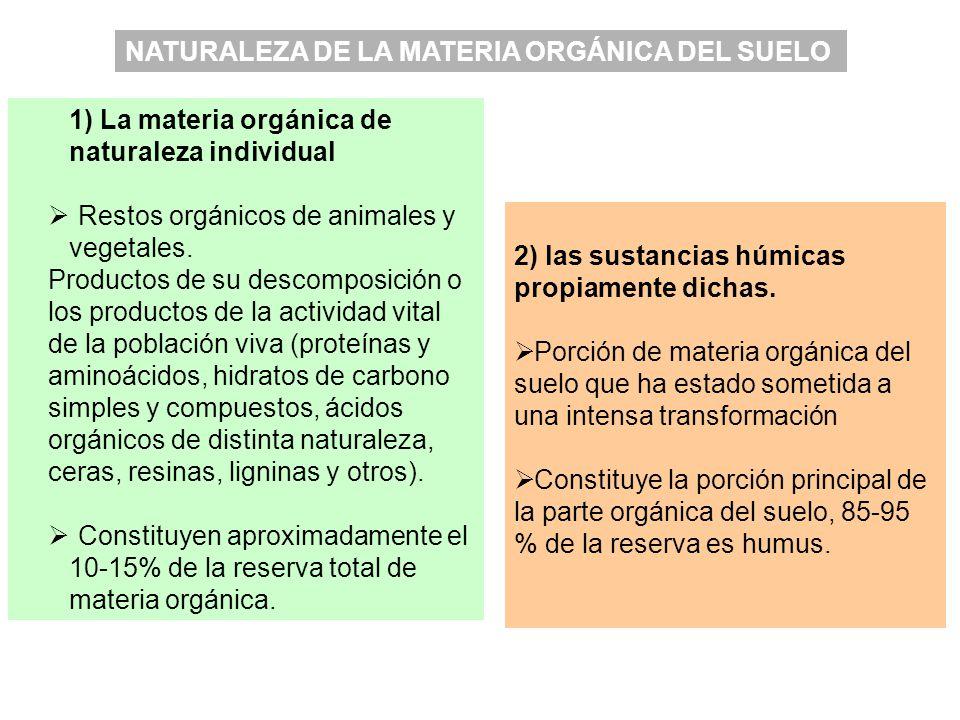 2) las sustancias húmicas propiamente dichas. Porción de materia orgánica del suelo que ha estado sometida a una intensa transformación Constituye la