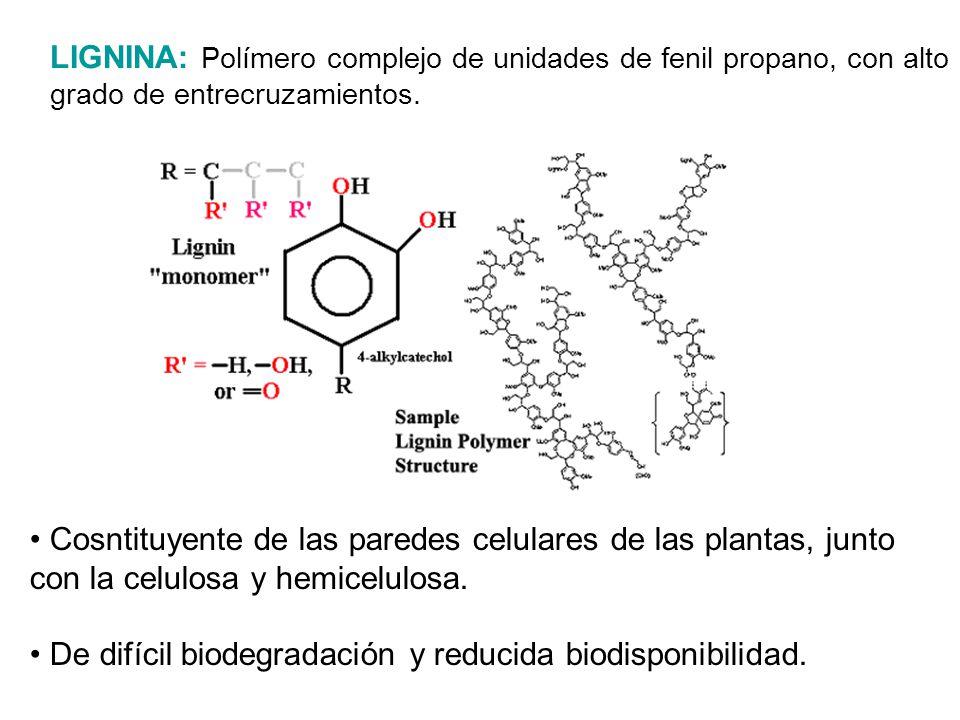 Cosntituyente de las paredes celulares de las plantas, junto con la celulosa y hemicelulosa. De difícil biodegradación y reducida biodisponibilidad. L