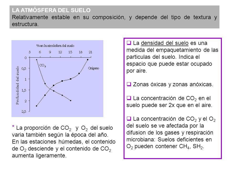 LA ATMÓSFERA DEL SUELO Relativamente estable en su composición, y depende del tipo de textura y estructura. * La proporción de CO 2 y O 2 del suelo va