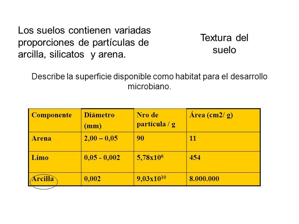 Clases Texturales Descripción ArenososSon los materiales que contienen 85 % o más de arena; el porcentaje de limo, más 1 ½ veces el porcentaje de arcilla, no deberá exceder de 15.