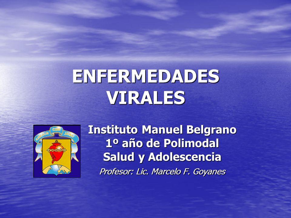 ENFERMEDADES VIRALES Instituto Manuel Belgrano 1º año de Polimodal Salud y Adolescencia Profesor: Lic. Marcelo F. Goyanes