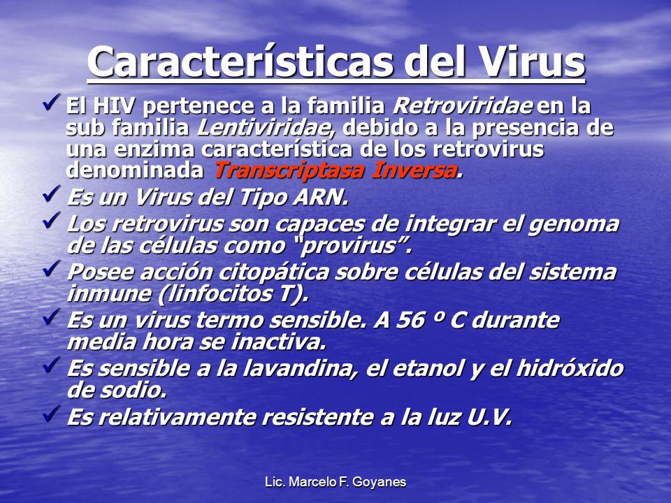 Lic. Marcelo F. Goyanes Características del Virus El HIV pertenece a la familia Retroviridae en la sub familia Lentiviridae, debido a la presencia de
